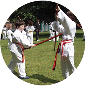 kids Aikido martial arts